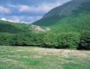 comunità montana.jpg